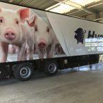 TOP PIGS Trailer met Fullcolour belettering